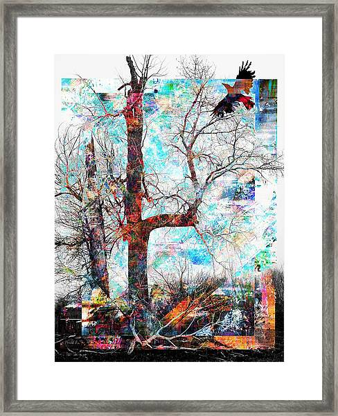 Dead Tree And Crow Framed Print