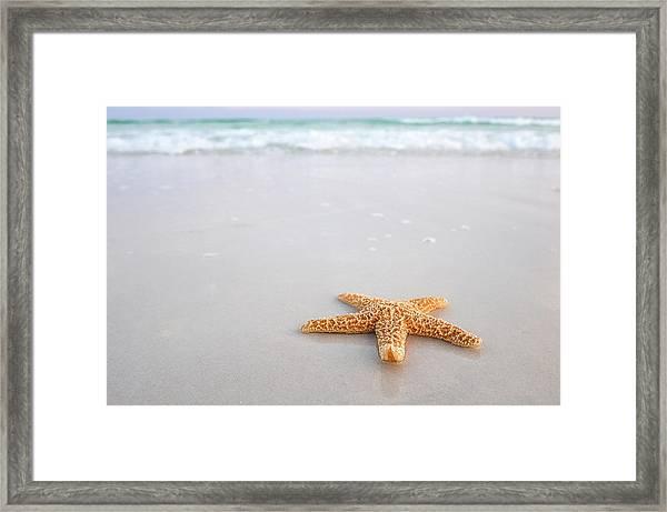 Destin Florida Miramar Beach Starfish Framed Print