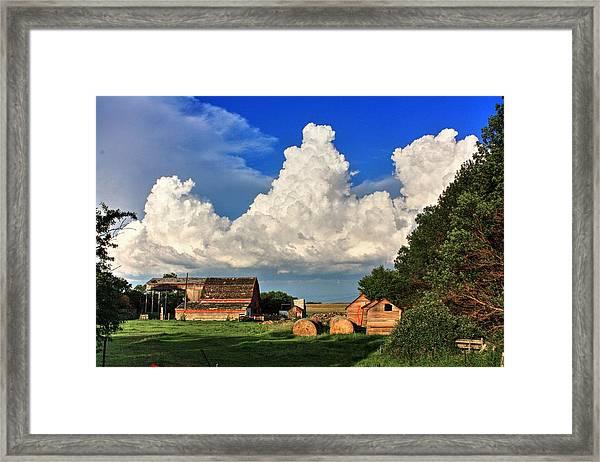 Farm Yard Framed Print