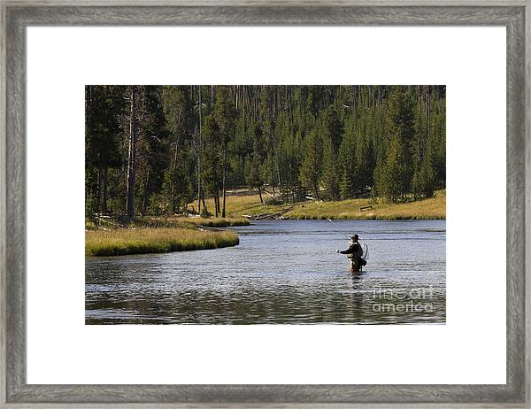 Fly Fishing In The Firehole River Yellowstone Framed Print