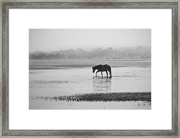 Foggy Morning Crossing Framed Print