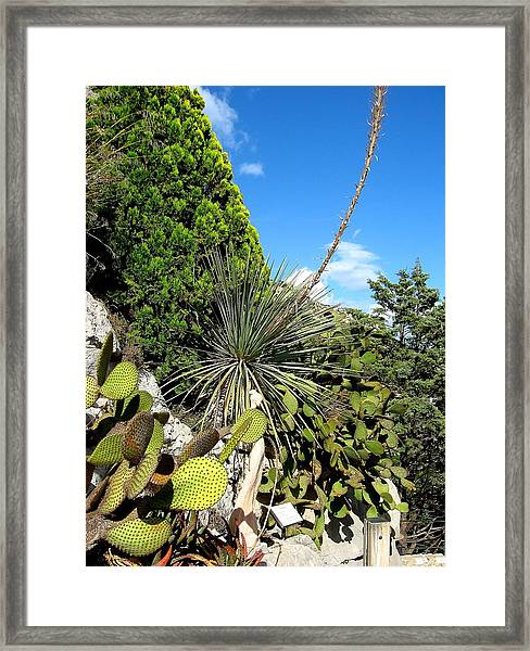 French Riviera Framed Print