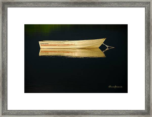 Framed Print featuring the photograph Gamefisher by AnnaJanessa PhotoArt