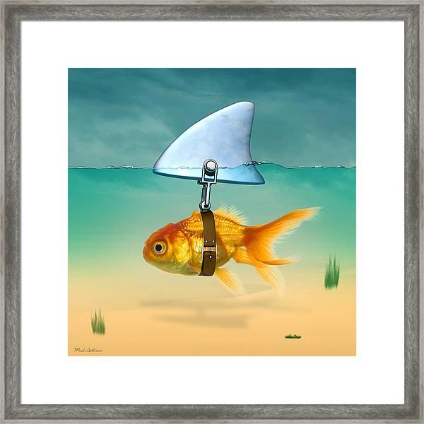 Gold Fish  Framed Print