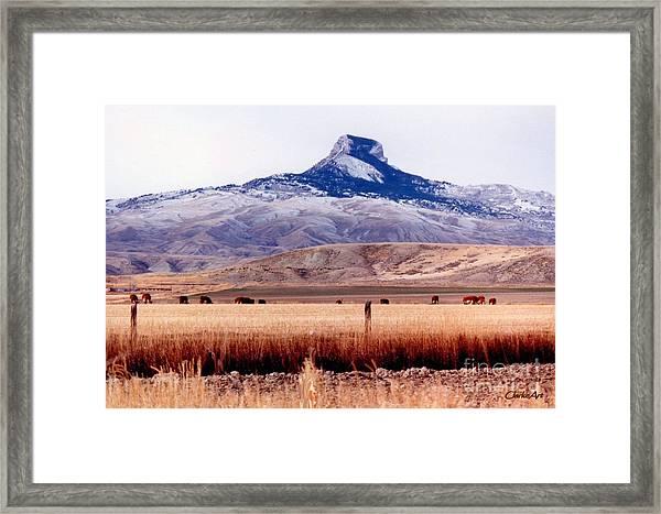 Hart Mountain - Cody,  Wyoming Framed Print