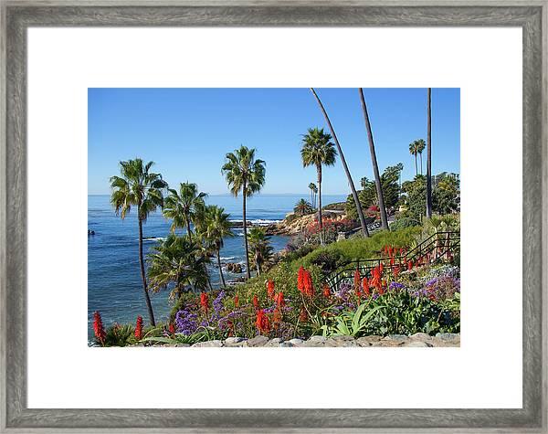 Heisler Park, Laguna Beach Framed Print