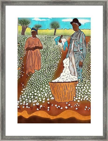 High Cotton Framed Print