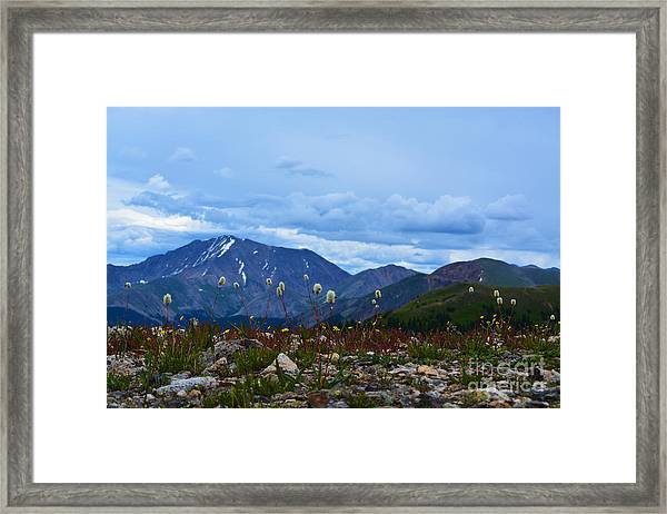 Framed Print featuring the photograph Independence Pass by Kate Avery