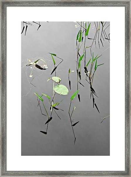 Framed Print featuring the photograph Izzys Pond by AnnaJanessa PhotoArt