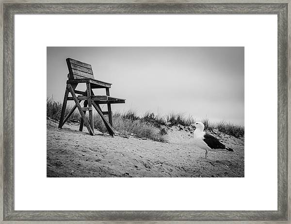 Just Add Water. Framed Print