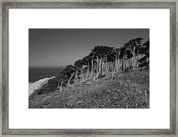Lands End In San Francisco Framed Print
