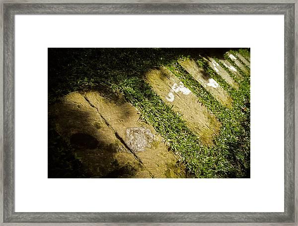 Light Footsteps In The Garden Framed Print