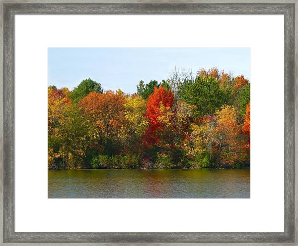 Michigan Fall Colors Framed Print