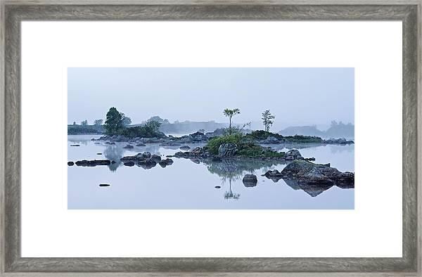 Mist And Trees Framed Print