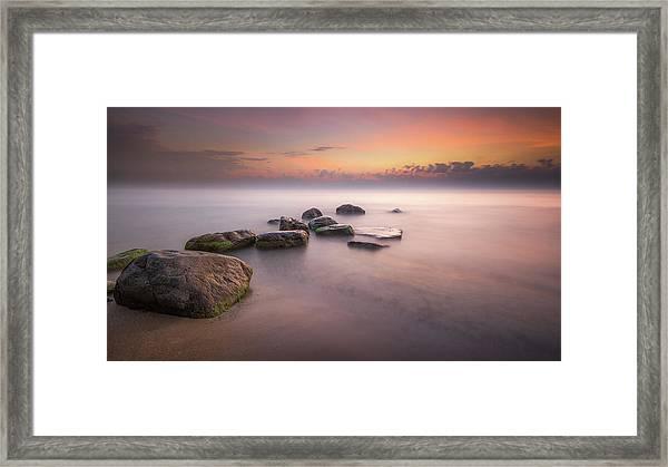 Morning Stretch Framed Print