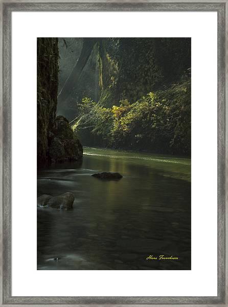 Mystical Canyon Signed Framed Print