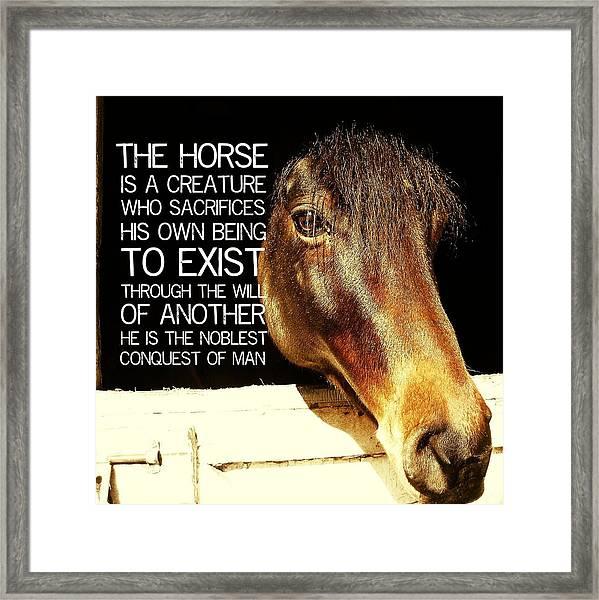 Noble Morgan Stallion Quote Framed Print