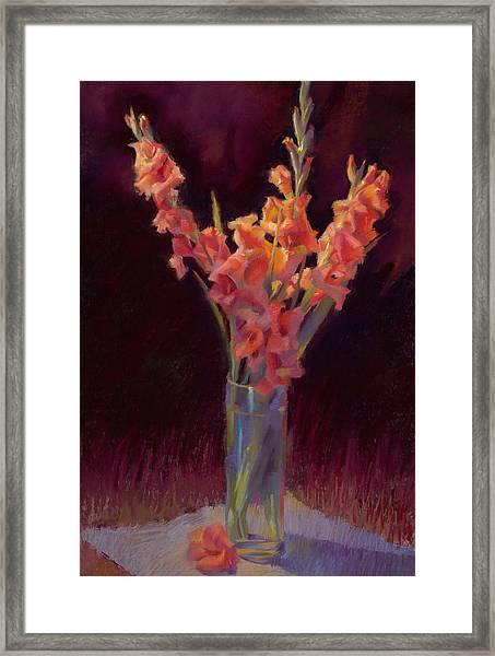 Orange Gladiolus Framed Print by Cathy Locke