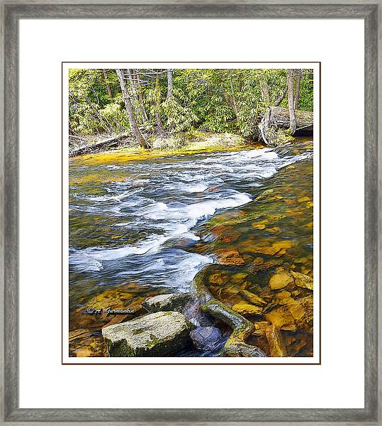 Pennsylvania Mountain Stream Framed Print