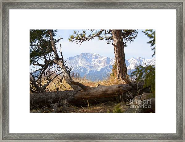 Pikes Peak And Trail To Bald Mountain Framed Print