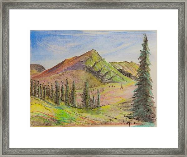 Pines On The Hills Framed Print
