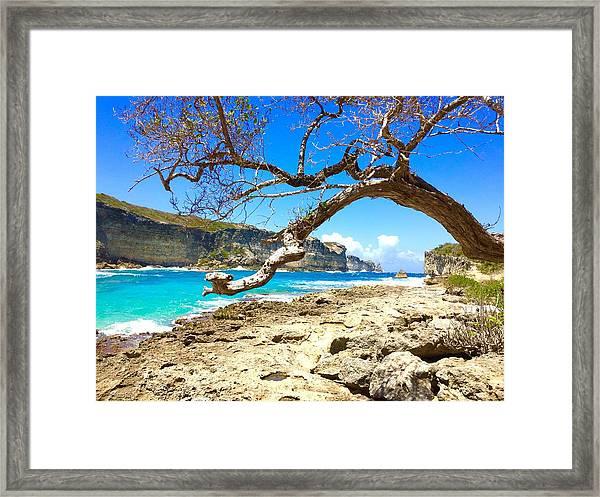 Porte D Enfer, Guadeloupe Framed Print