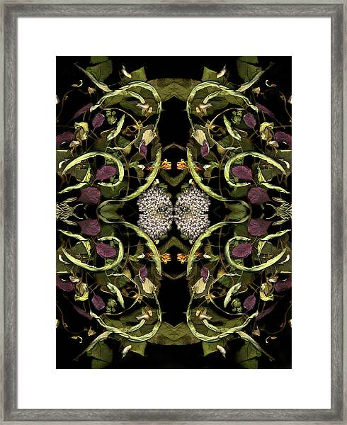 Recollection Framed Print