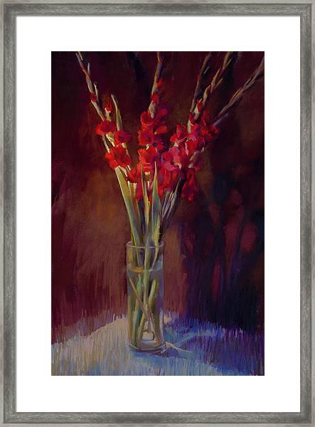 Red Gladiolus Framed Print by Cathy Locke