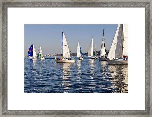 Sailing On Elliott Bay Framed Print by Tom Dowd