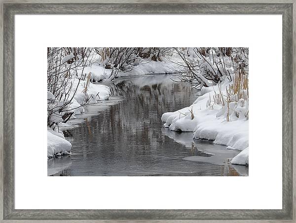 Seasons Greetings Framed Print by Phyllis Britton