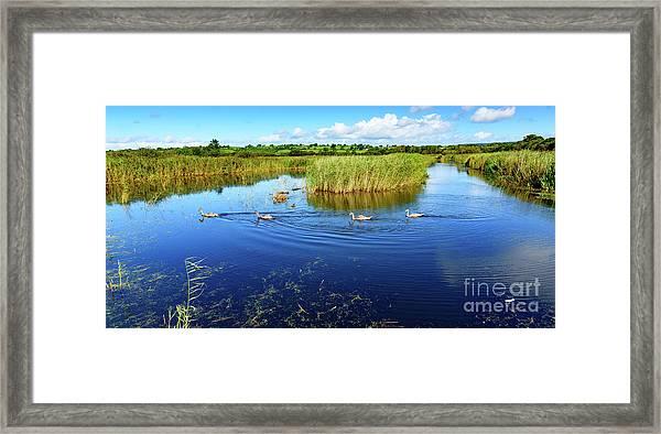 Somerset Levels Framed Print
