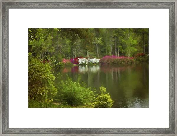 Spring Daze Framed Print