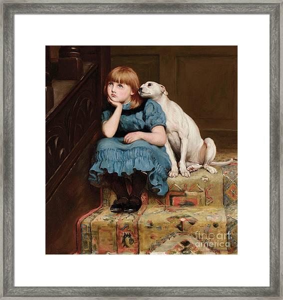 Sympathy Framed Print