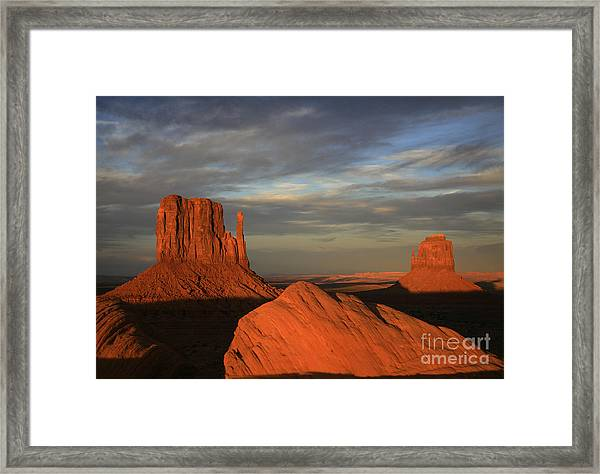 The Mittens Framed Print