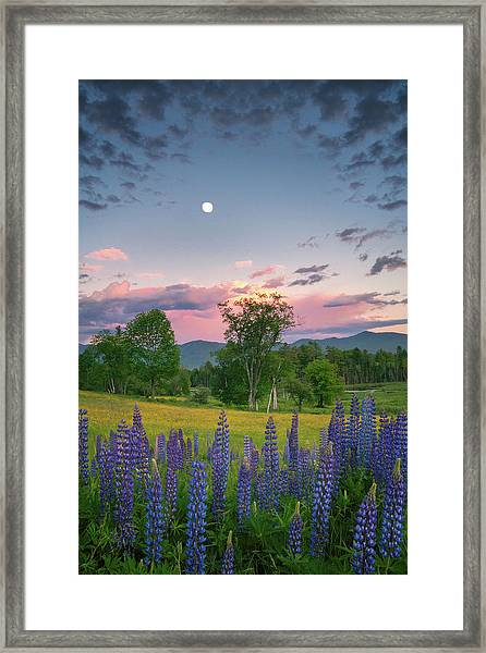 The Moon Rises Above Framed Print