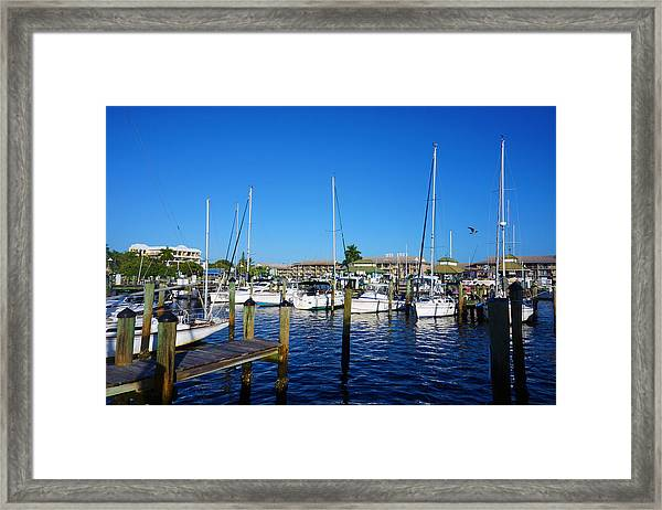 The Naples City Dock Framed Print