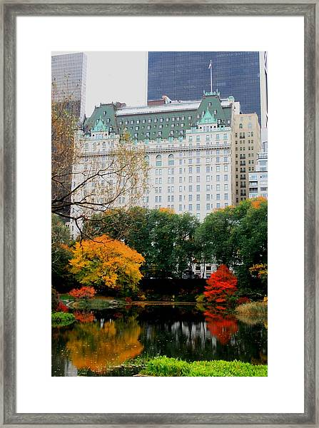 The Park And The Plaza Framed Print