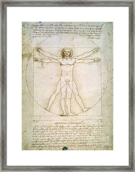 The Proportions Of The Human Figure Framed Print