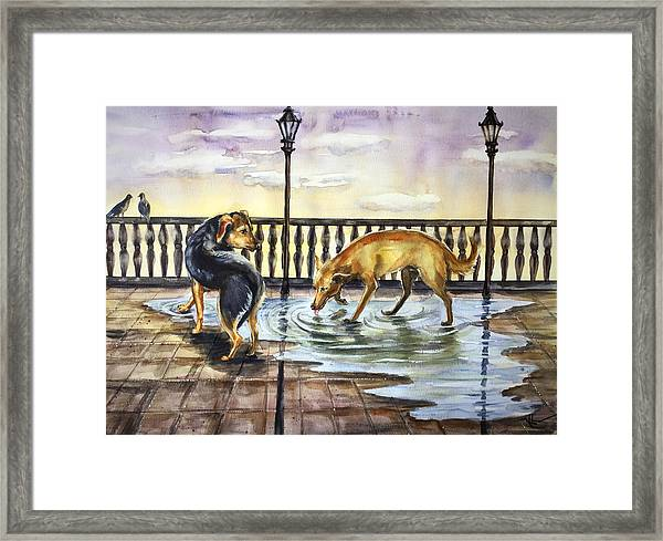 Framed Print featuring the painting Thirst by Katerina Kovatcheva