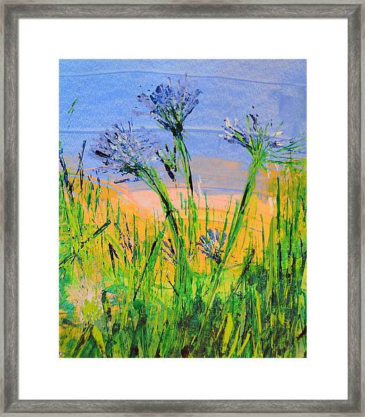Thistles One Framed Print