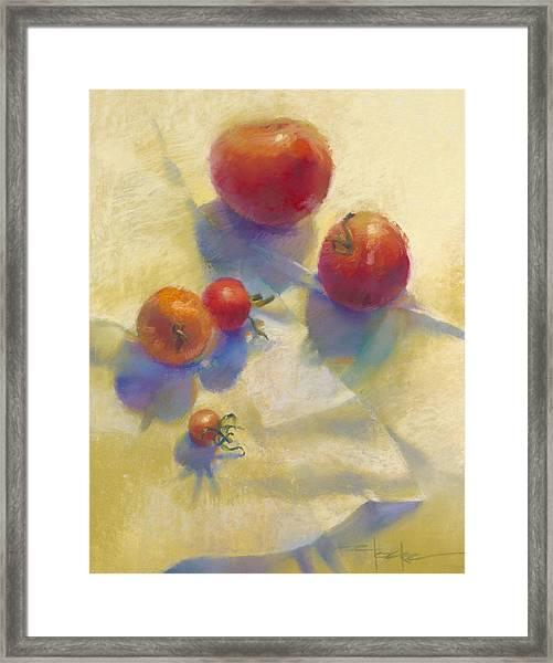 Tomato Blues Framed Print by Cathy Locke