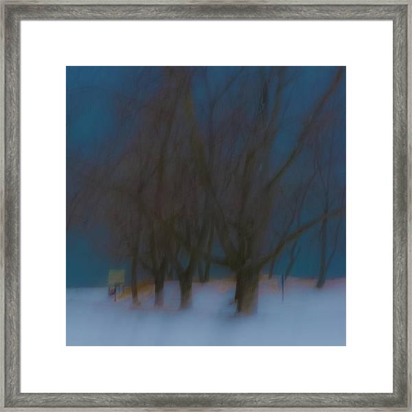 Tree Dreams Framed Print
