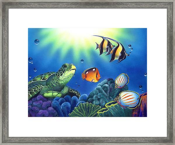 Turtle Dreams Framed Print