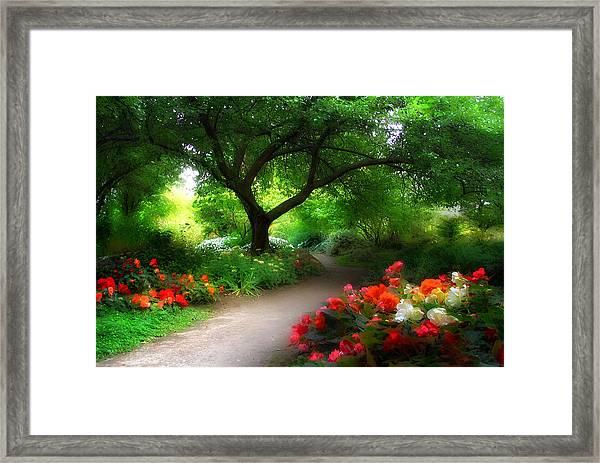 Vista Beyond Framed Print