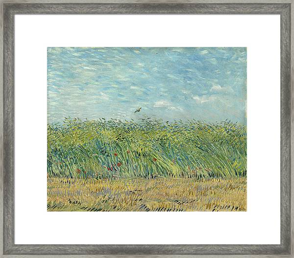 Wheatfield With Partridge Framed Print