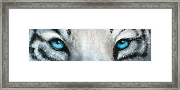 Whos Watching Who...white Tiger Framed Print by Darlene Green