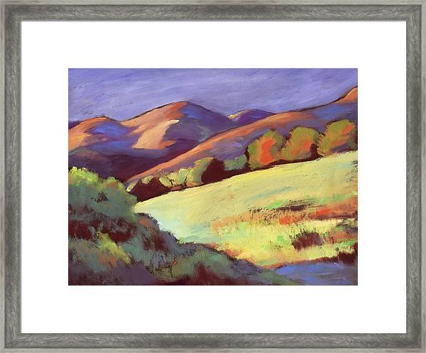 Wildcat Canyon Hillside Framed Print