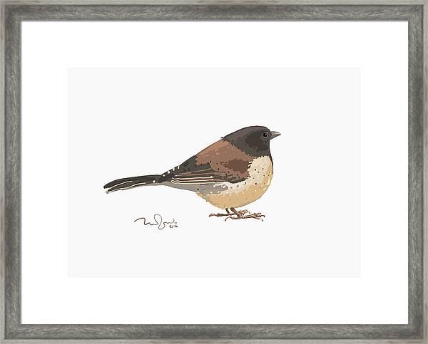 Bird Framed Print by Penko Gelev