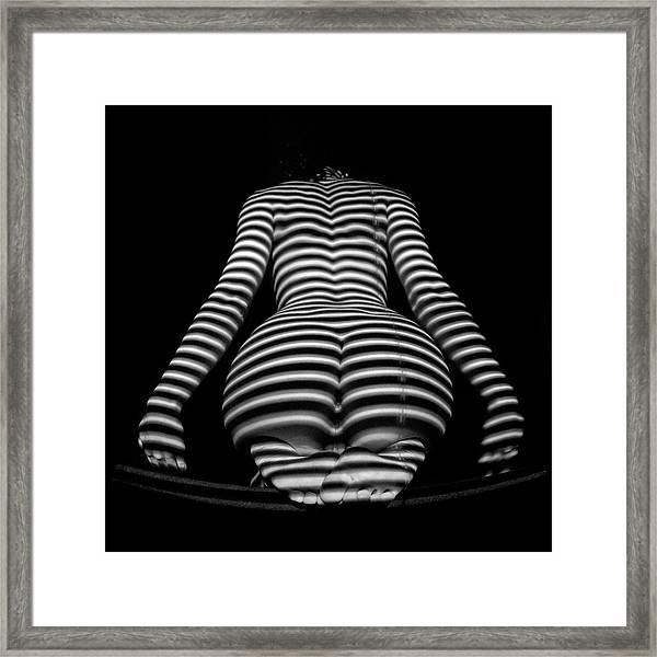 1249-mak Zebra Woman Rear View Striped Sexy Nude  Framed Print