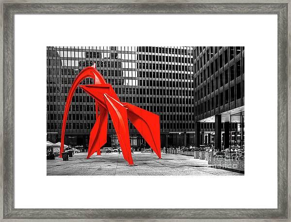 1371 The Flamingo Framed Print